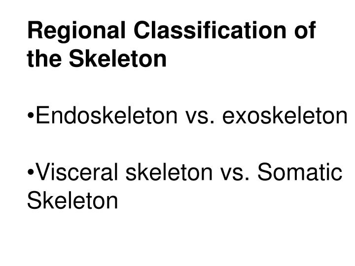 Regional Classification of the Skeleton