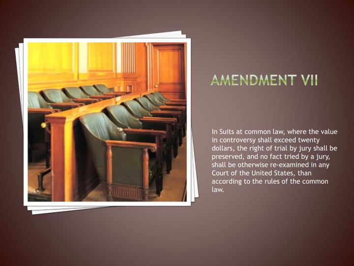 Amendment vii
