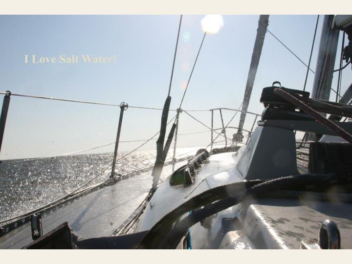 I Love Salt Water!