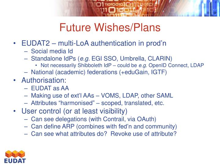 Future wishes plans