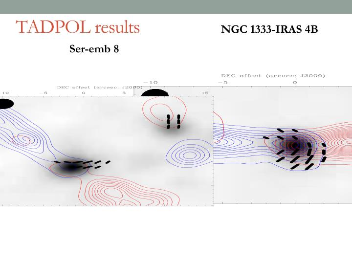 TADPOL results