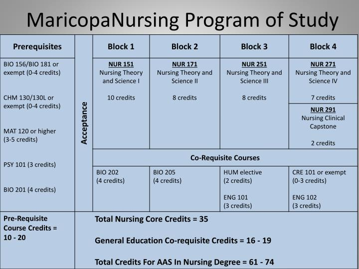 Maricopanursing program of study