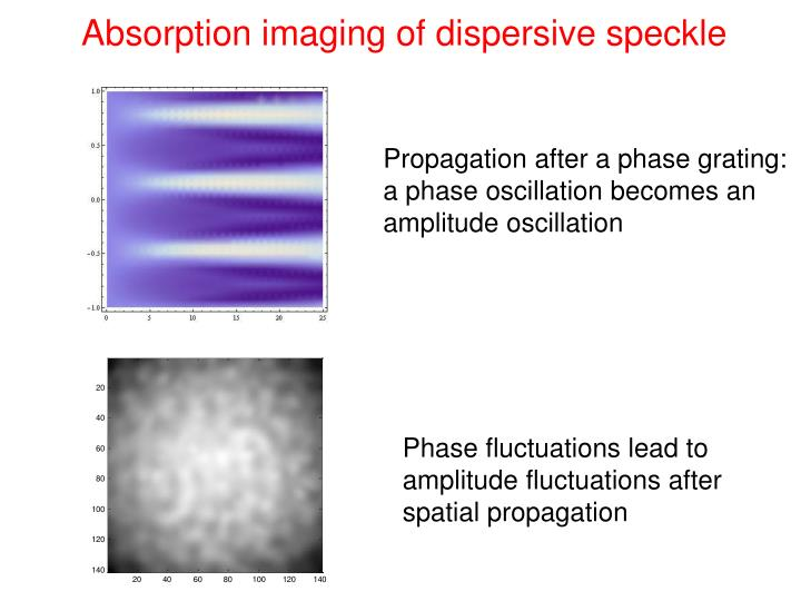 Absorption imaging of dispersive speckle