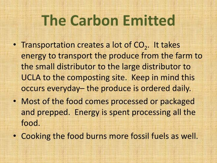 The Carbon