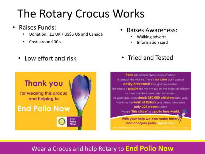 The Rotary Crocus Works