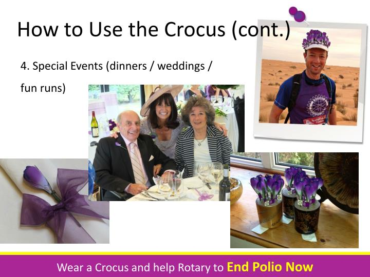 How to Use the Crocus (cont.)