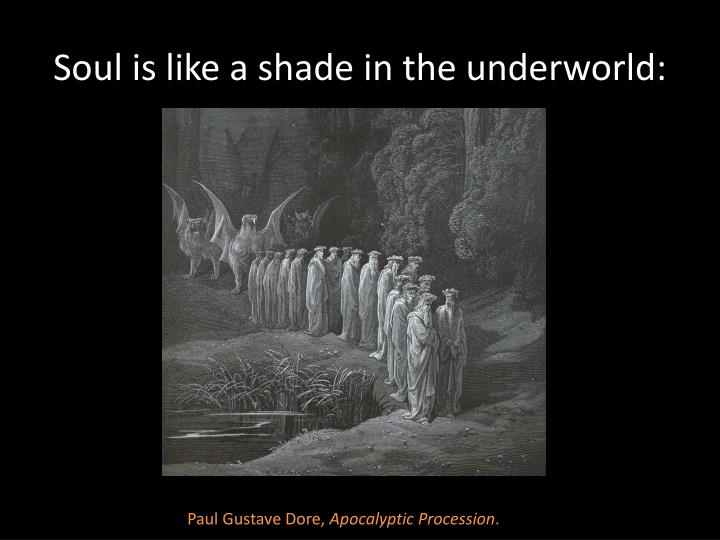 Soul is like a shade in the underworld: