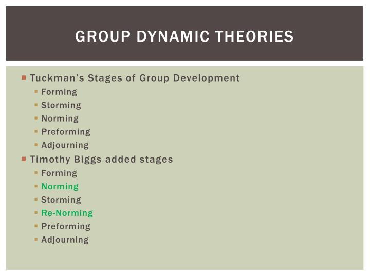 Group Dynamic Theories