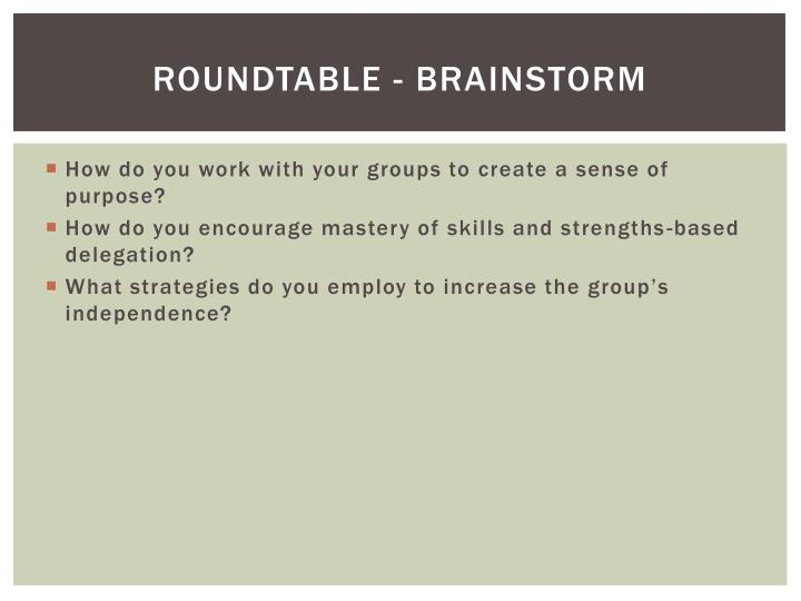 Roundtable - Brainstorm