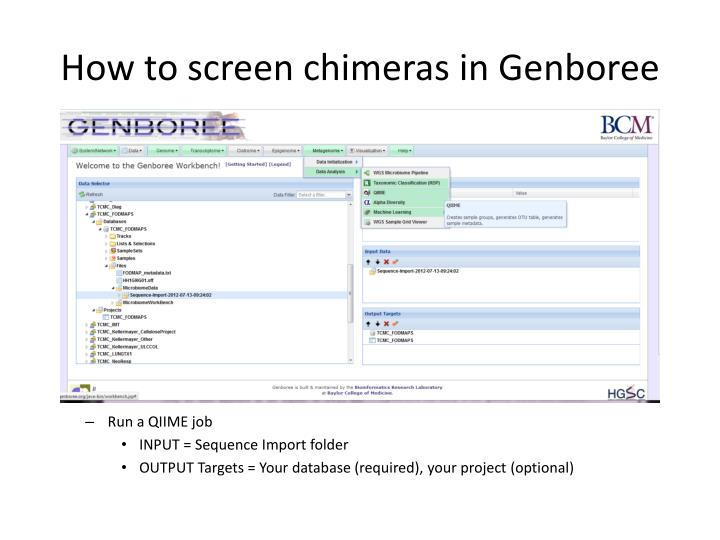 How to screen chimeras in Genboree