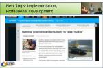 next steps implementation professional development