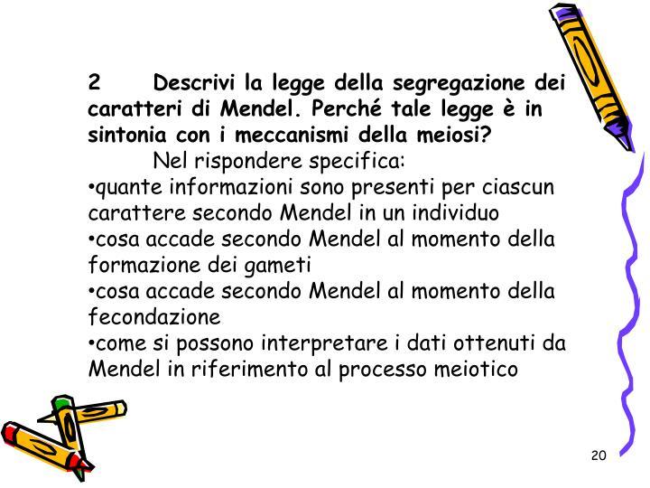 2Descrivi la legge della segregazione dei caratteri di Mendel. Perché tale legge è in sintonia con i meccanismi della meiosi?