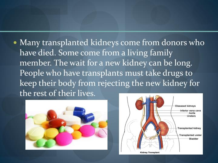 Many transplanted kidneys come from donors who have died. Some come from a living family member. The wait for a new kidney can be long. People who have transplants must take drugs to keep their body from rejecting the new kidney for the rest of their lives.