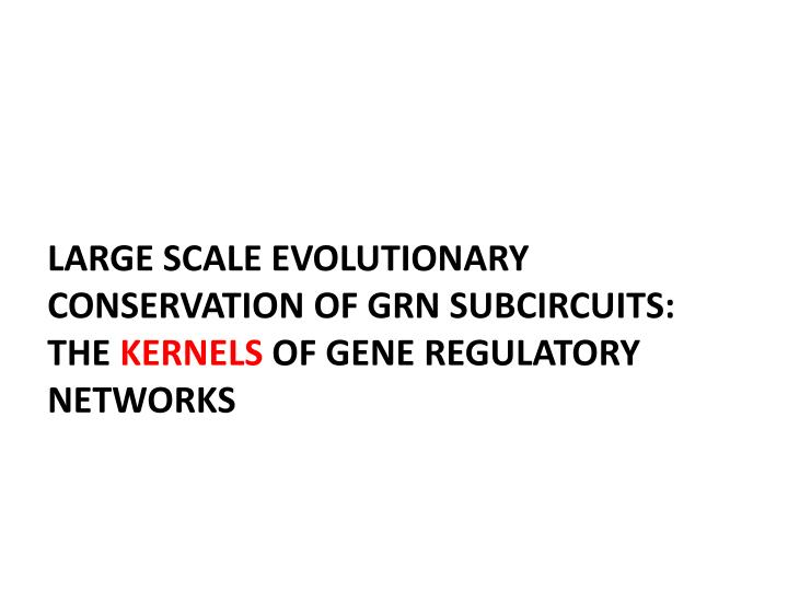 LARGE SCALE EVOLUTIONARY CONSERVATION OF GRN SUBCIRCUITS:  THE