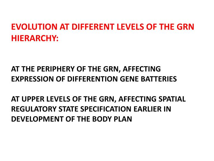 EVOLUTION AT DIFFERENT LEVELS OF THE GRN HIERARCHY: