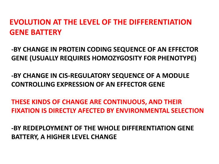EVOLUTION AT THE LEVEL OF THE DIFFERENTIATION GENE BATTERY