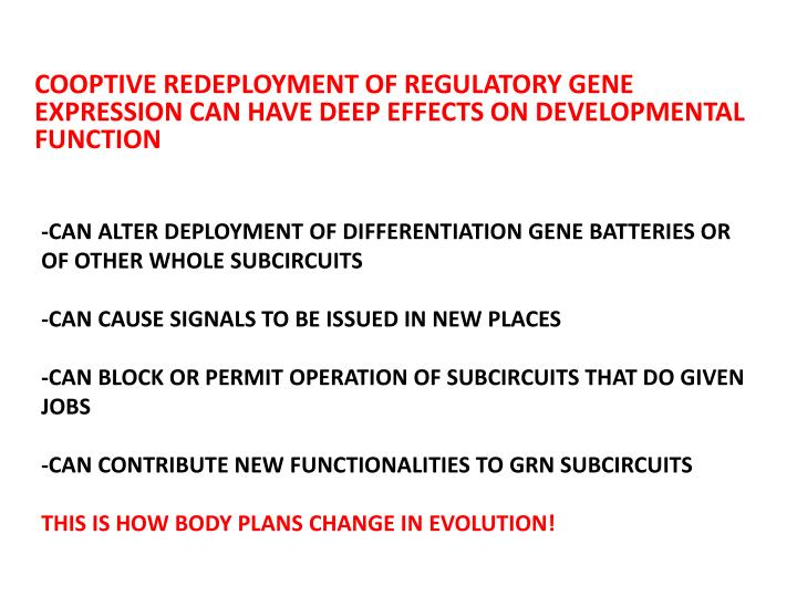 COOPTIVE REDEPLOYMENT OF REGULATORY GENE EXPRESSION CAN HAVE DEEP EFFECTS ON DEVELOPMENTAL FUNCTION