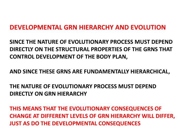 DEVELOPMENTAL GRN HIERARCHY AND EVOLUTION