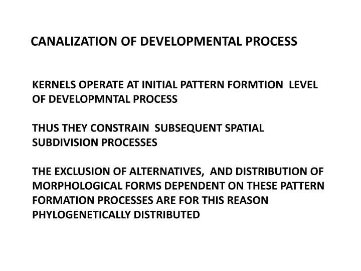 CANALIZATION OF DEVELOPMENTAL PROCESS