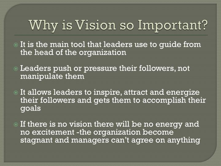 Why is Vision so Important?