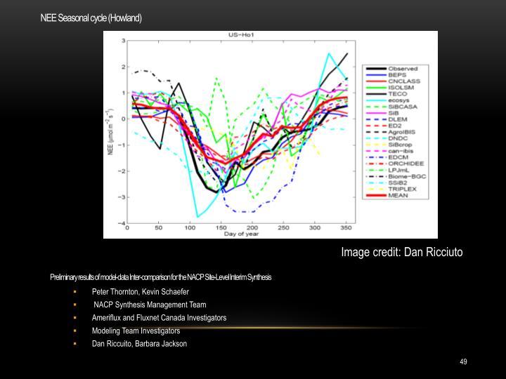 NEE Seasonal cycle (Howland)