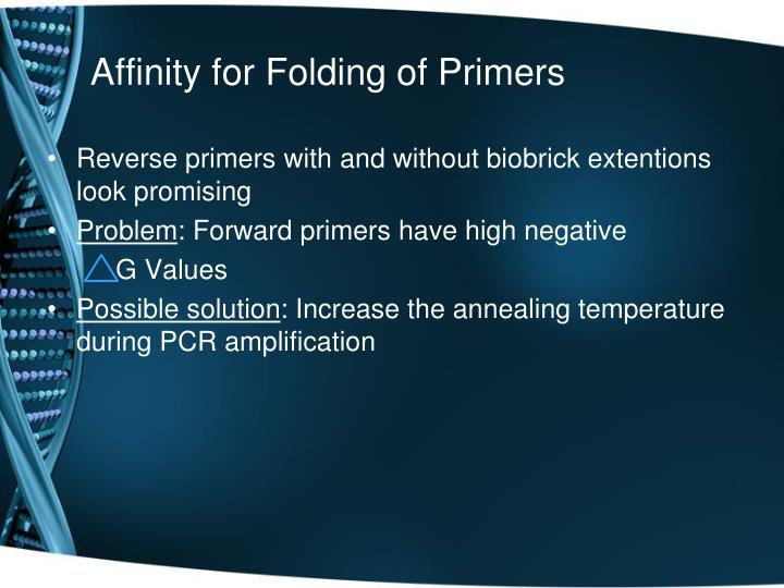 Affinity for Folding of Primers