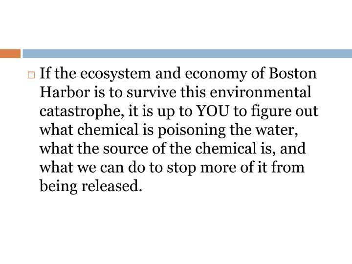 If the ecosystem and economy of Boston Harbor is to survive this environmental catastrophe, it is up to YOU to figure out what chemical is poisoning the water, what the source of the chemical is, and what we can do to stop more of it from being released.