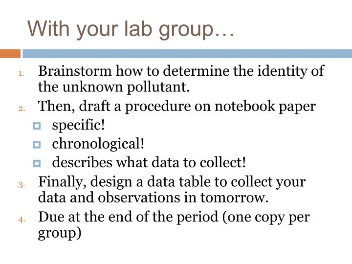 With your lab group…