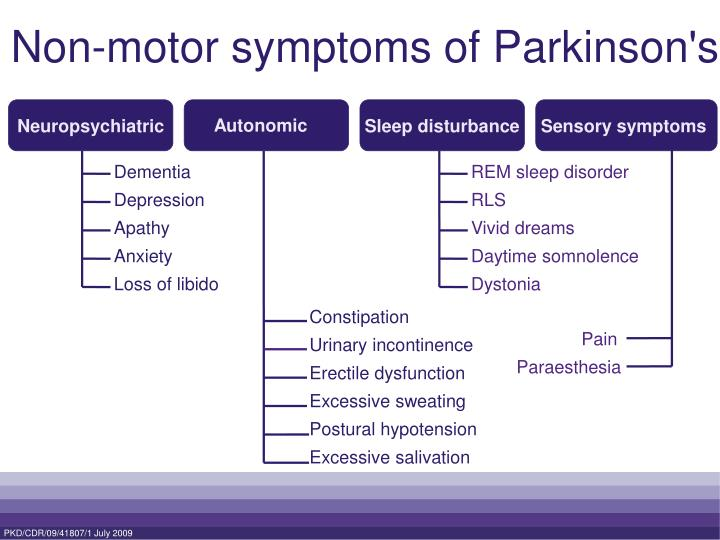 Ppt What Is Parkinson S Powerpoint Presentation Id