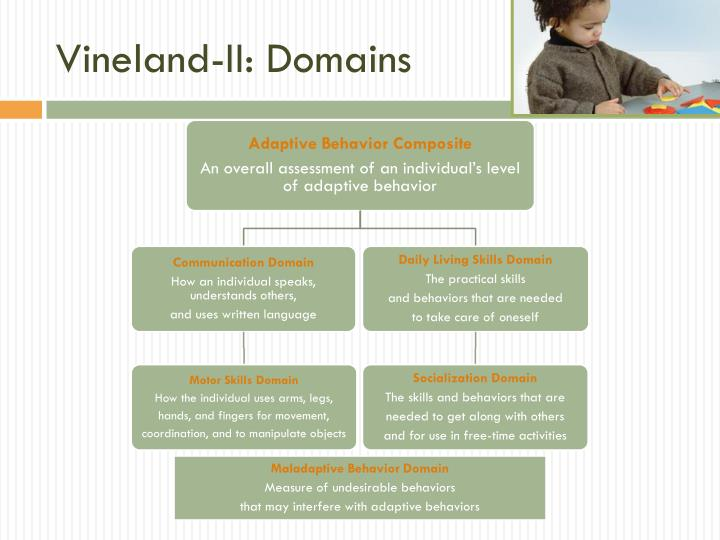 Vineland-II: Domains