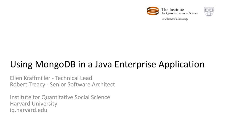 Using MongoDB in a Java Enterprise Application