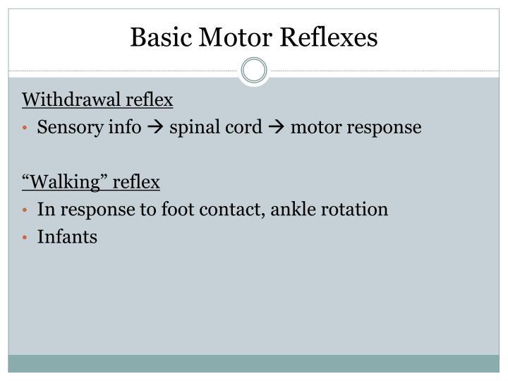 Basic Motor Reflexes