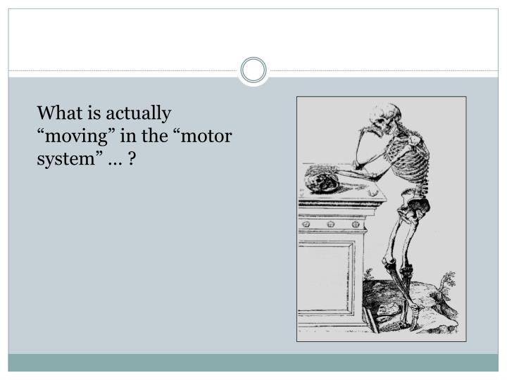 "What is actually ""moving"" in the ""motor system"" … ?"