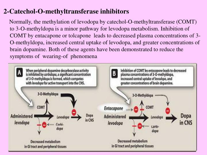 2-Catechol-O-methyltransferase inhibitors