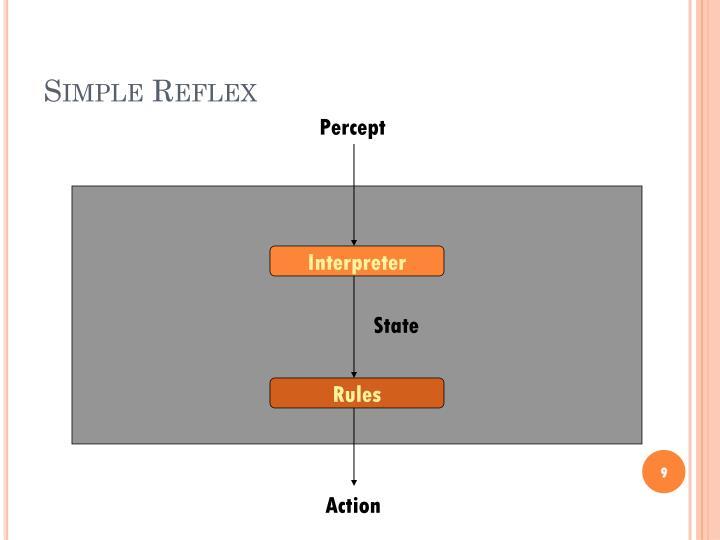 Simple Reflex