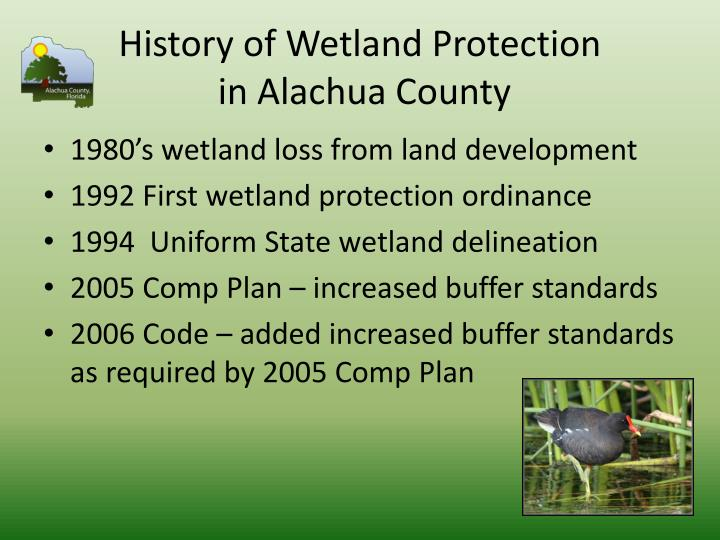 History of Wetland Protection