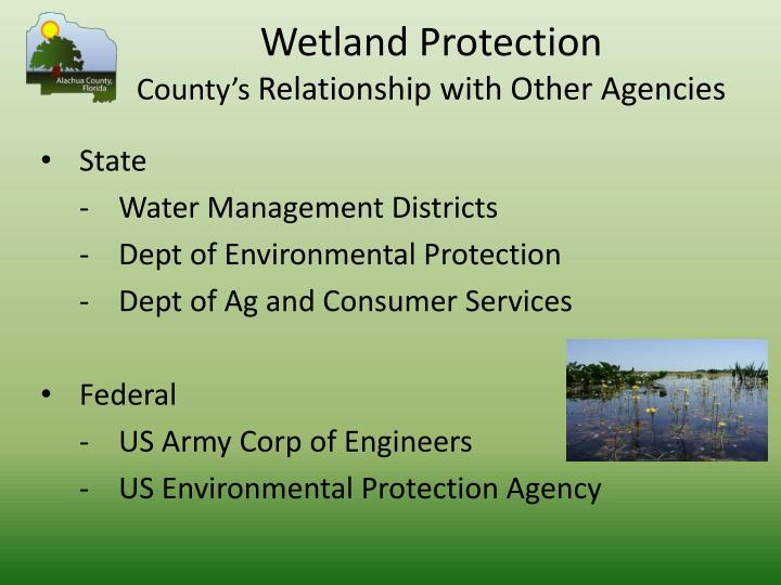 Wetland Protection