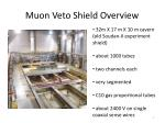 muon veto shield overview