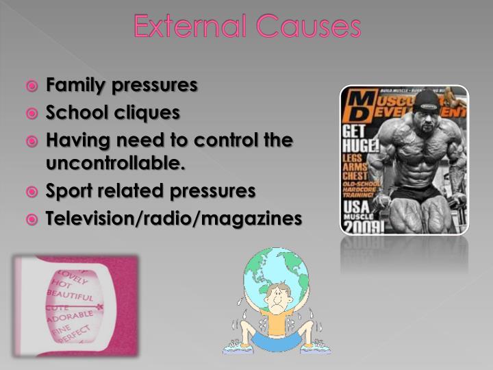 External Causes