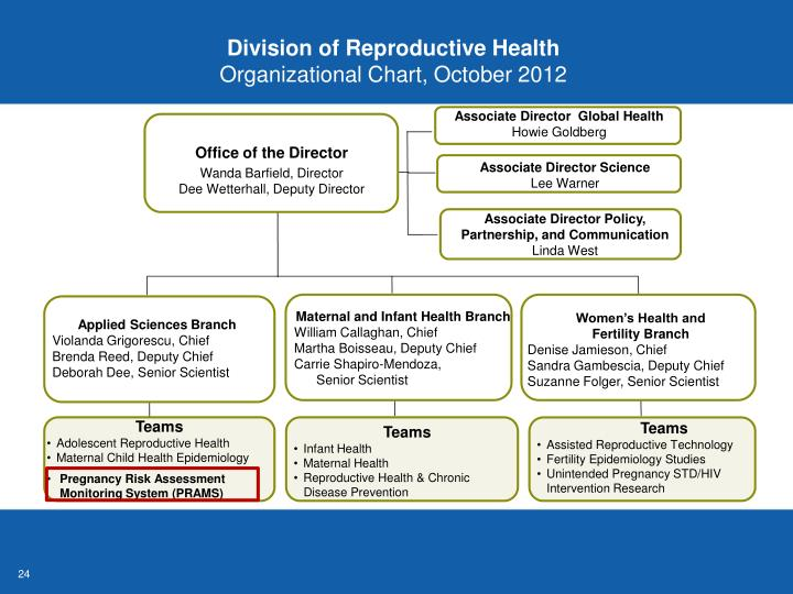 Division of Reproductive Health