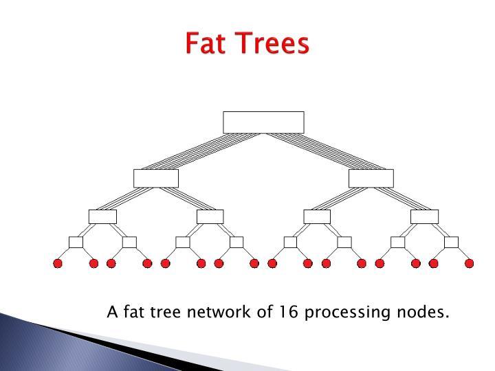Fat Trees