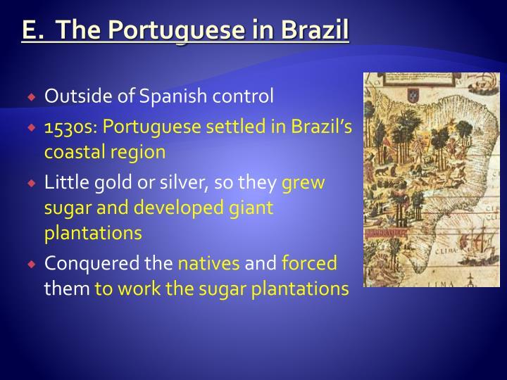 E.  The Portuguese in Brazil