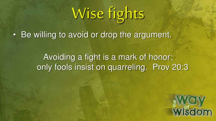 Wise fights