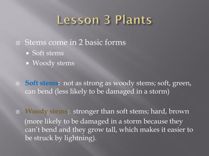 Lesson 3 Plants