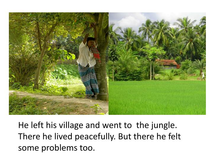 He left his village and went to  the jungle. There he lived peacefully. But there he felt some problems too.