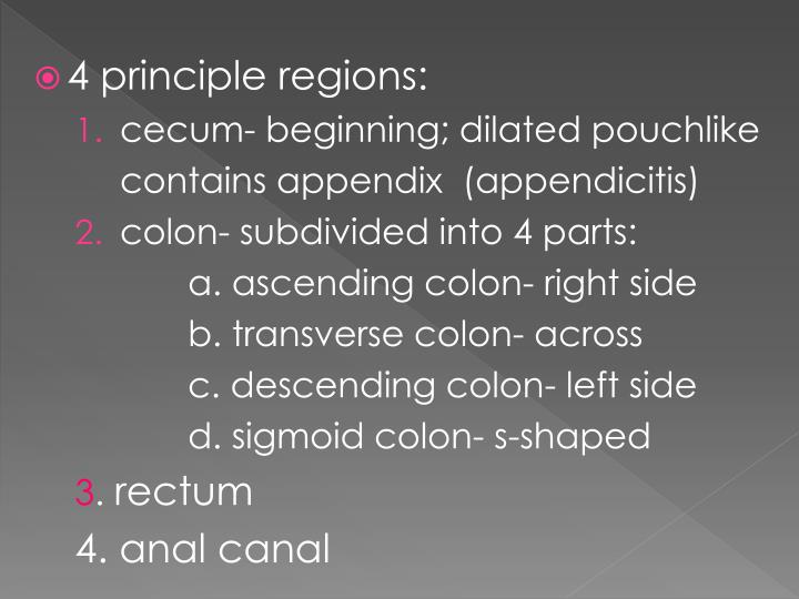 4 principle regions: