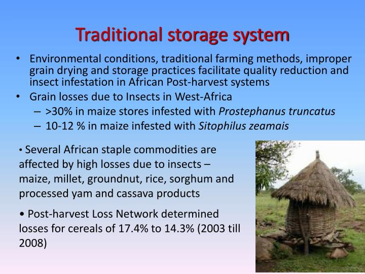 Traditional storage system