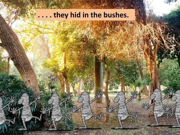 . . . . they hid in the bushes.