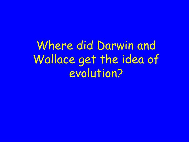 Where did Darwin and Wallace get the idea of evolution?