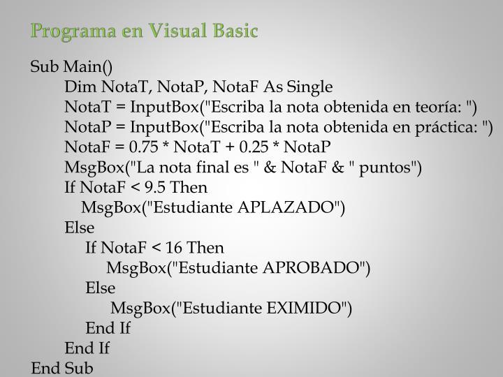 Programa en Visual Basic